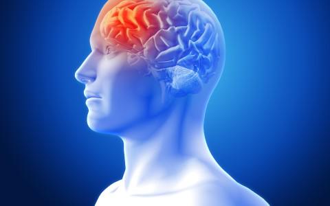 Estudo afirma não haver associação entre tumor cerebral e telefone celular; especialista questiona